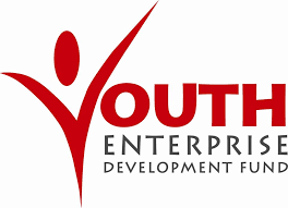 Youth Enterprise Development Fund
